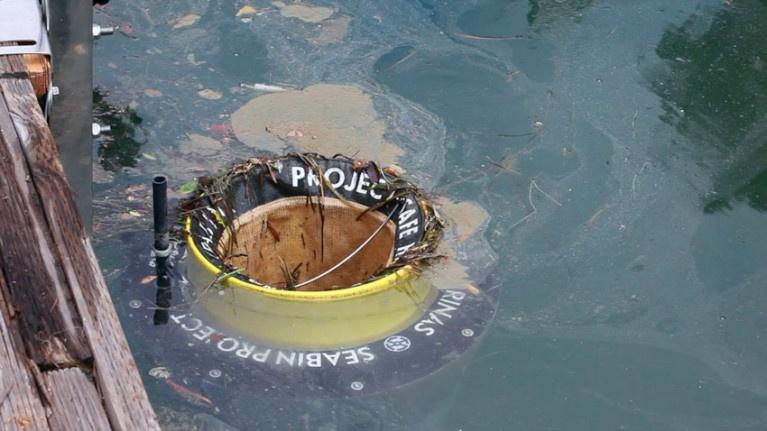papelera marina seabin