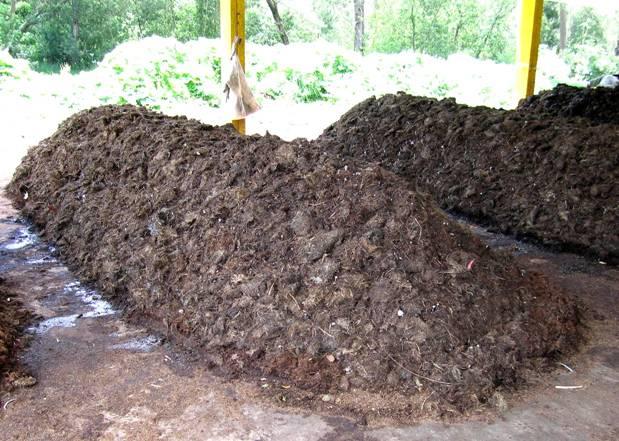 sistema de biogás