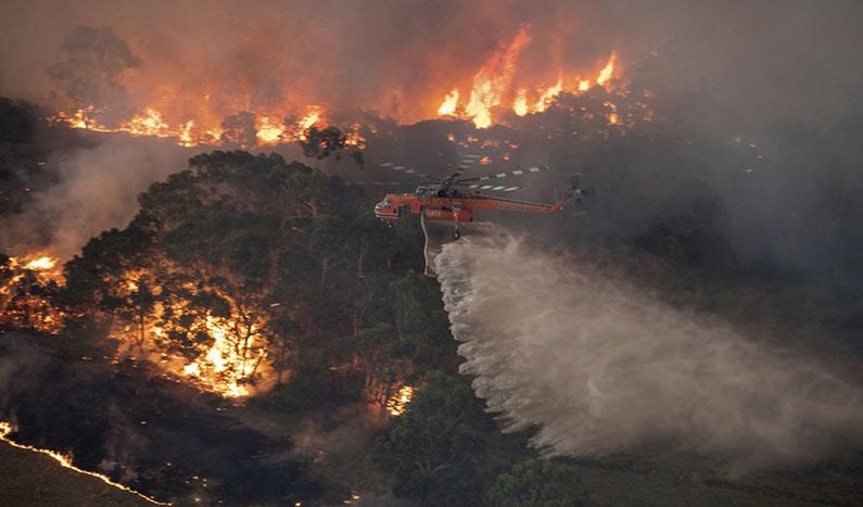 incendios forestales de australia