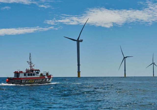 Dispositivos de Energía Renovable Marina