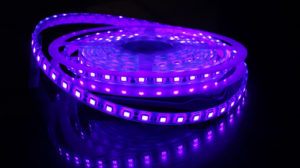 led ultravioleta