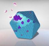 Investigadores del Reino Unido abren posibilidades para desarrollar hidrógeno